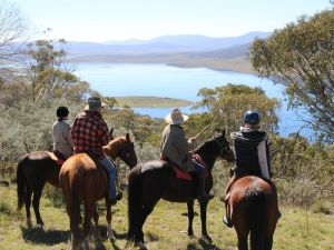 Reynella Homestead and Horseback Rides - Accommodation Fremantle