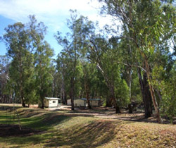 Balranald Caravan Park - Accommodation Fremantle