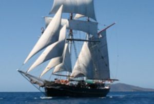 Australian Tallship Cruises - Accommodation Fremantle