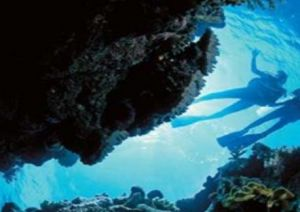 Deep Sea Divers Den - Accommodation Fremantle